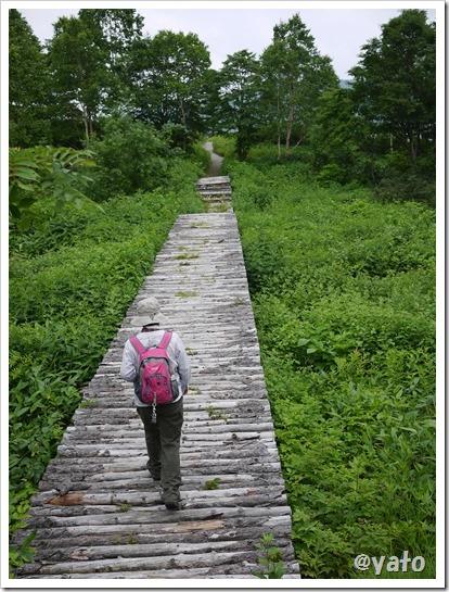 野反湖 木製橋