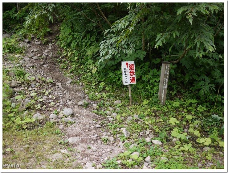 銀山平キャンプ場 ハード遊歩道