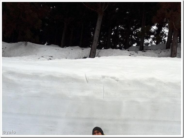 津南町 豪雪