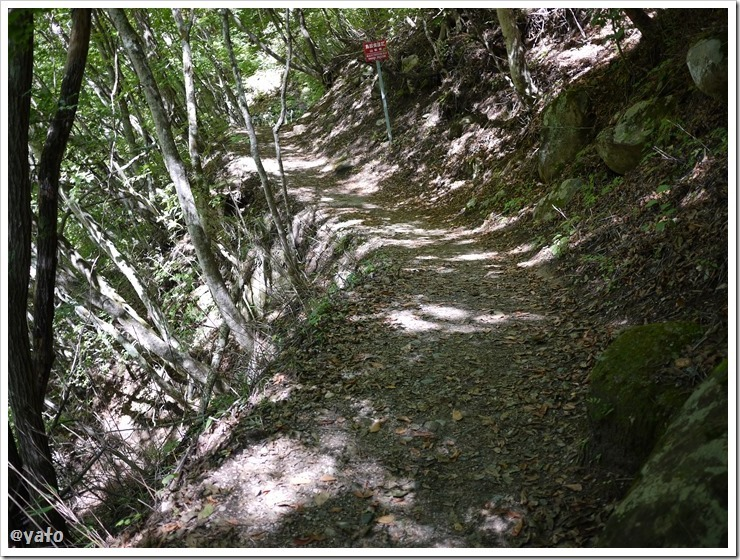 西沢渓谷 細い道