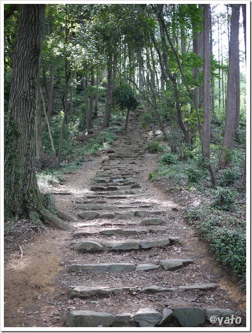 多峯主山登山道 石段