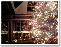 夕やけ小やけふれあいの里 クリスマスツリー